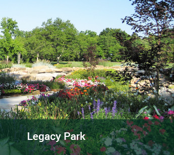 View of flower gardens at Legacy Park